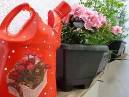 Regador de plantas com material reciclável - Destaque