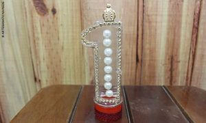 Aula rápida: Lembrancinha de acrílico com decoração para festa de 1 ano - Destaque