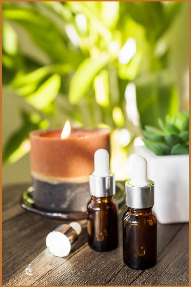 2 tipos de velas decorativas: Vela ecológica e vela em gel - Ilustração de produtos